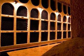 Grilování a víno - kombinace, která jde k sobě